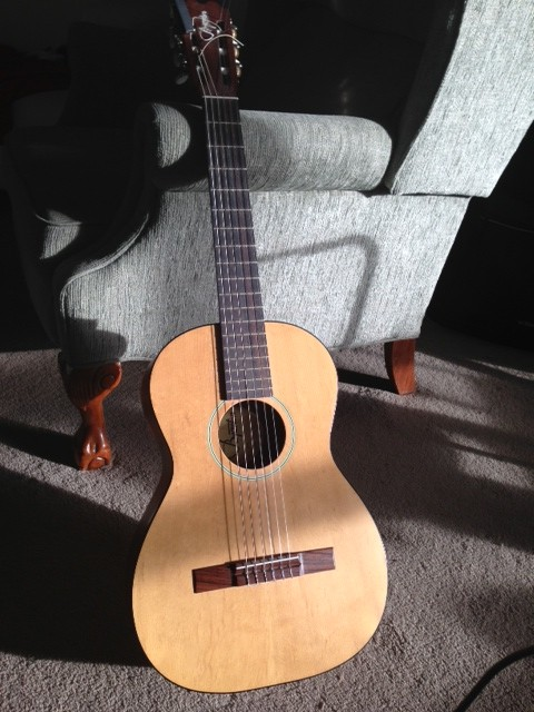 bjarton guitar